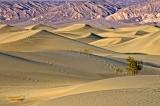 Return to Death Valley