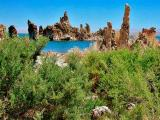 Mono Lake, the High Sierras, and Sequoia National Park