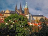 Castle and St. Vitus cathedral