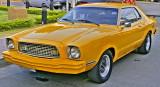 Mustang Mustard Colour -  Kanchanaburi