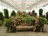 Botanical garden Chiang Mai