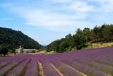 Provence, 2003