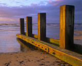 Golden Groyne