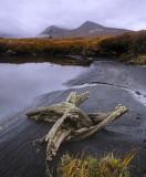 Blackmount Snag