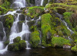Verdant Falls