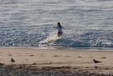 Bondi Beach and Surrounds