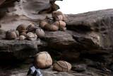 11329 Trapped Rocks (9)