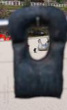11682 Sitting Hen (105) seen through Bronzed Aussie Series Life Jackets (84)