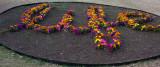 12144 Garden Mandala (59)