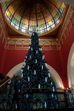 20101210_103595 Walking Past The Christmas Tree (Fri 10 Dec)