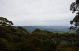 12470 View To The Escarpment