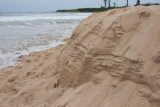 13501 The Layered Sandbank