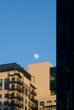 13052 Moon Over Melbourne II