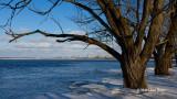 Winter at Mud Lake