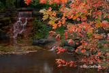 Andrew Haydon Park Waterfall