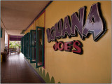 Iguana Joe's in Oranjestad, Aruba