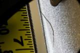 Closeup_MG_7277.jpg