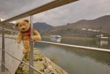 Visiting the Douro Region
