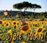 Frimpong in Tuscany  - by Roberto Capaccioli