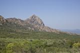 Southeastern Arizona Birding Trip with Bob Power  and Santa Clara Valley Audabon Society-2010