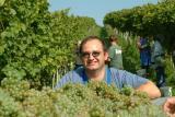 Niederösterreichs Weine 2008