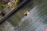 Kathy Enjoying the Springs2