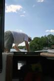Jay Raising the Anchor
