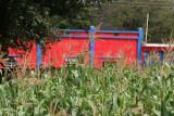 Plantacion de Maiz y Casa Local