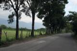 Carretera Entre Cabañas y Huite