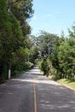 Carretera Hacia Santa Rosa