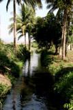 Canal de Irrigacion