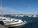 Le port de plaisance, au fond le mont St Martin