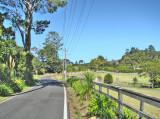 Waitakere Roads