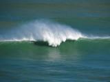 Big wave breaking at Piha
