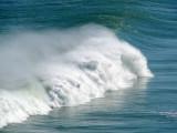 Crashing 20 foot wave at Piha