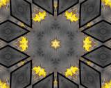 Kaleidoscopic images