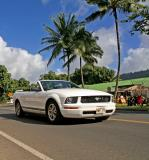 Mustang - Kauai