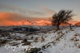 Sunrise on the Moelwyn range