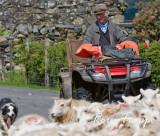 Trawsfynydd sheep farmer
