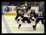 Nashville Predators Hockey NHL