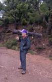 CB logging in the Rastel
