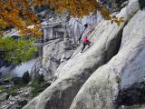 Pyreenean granite, Gente with leaves