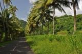 Martinique-002.jpg