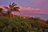 Martinique-103.jpg