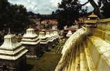 Népal Katmandou-088.jpg