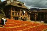 Népal Katmandou-094.jpg