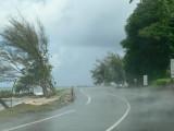 p552 Tropical rain
