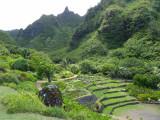 P0188 Limahuli Valley overlook