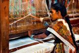 The cotton loom