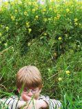 callum in the grass
